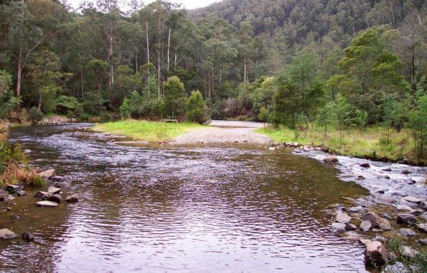 Coopers Creek Reserve Campground