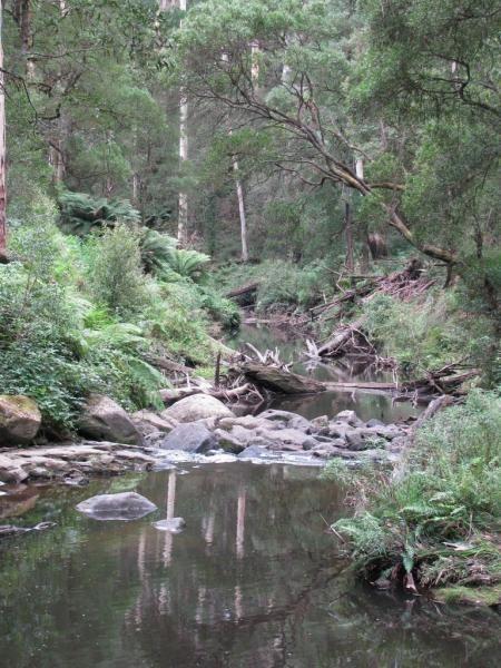 Dando's Camping Area