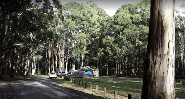 Ditchfield Camping Area