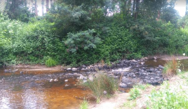 Franklin River Reserve