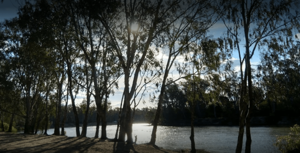 Big Toms Beach Camping Area