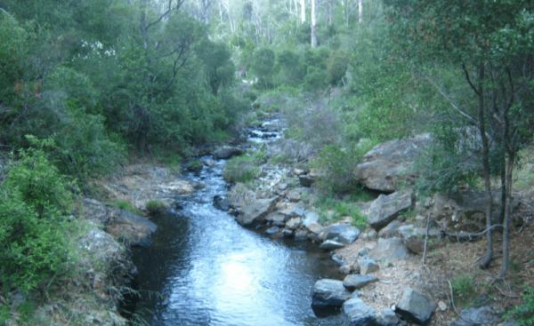Jones Camping Area