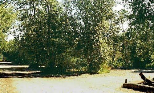 Loch Sport – Emu Bight Campground National Park