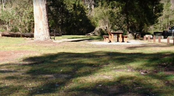 Log Crossing Picnic Area
