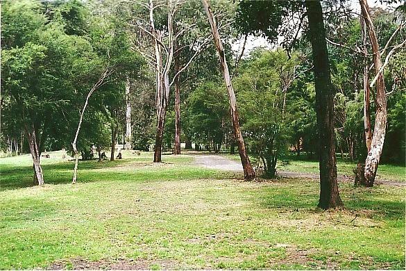 Sennis Campground