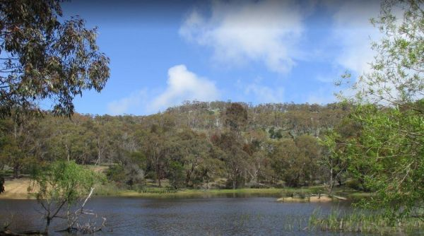 Mount Beckworth Scenic Reserve - The Dam - Camping Area