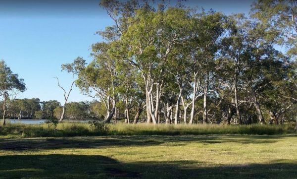 Cockatoo Lake Reserve