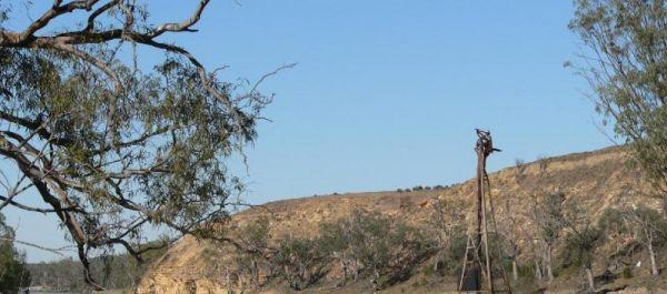 Heron Bend Camping Area
