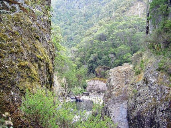 Leven Canyon Reserve Rest Area