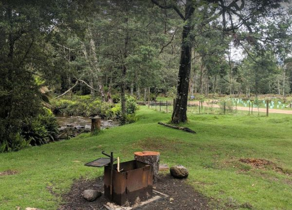 Lower Liffey Reserve Camping Area
