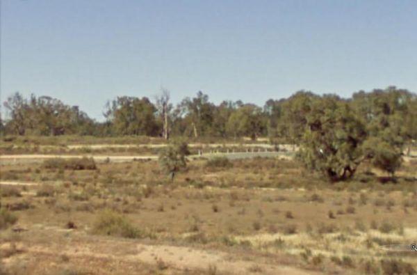 Yanga Creek Rest Area