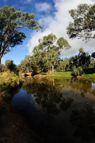 Avoca Lions Park Free Camping
