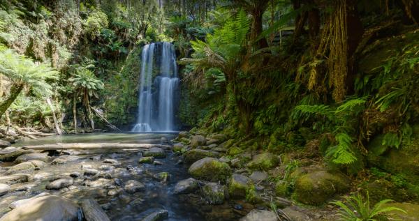 Beauchamp Falls Reserve