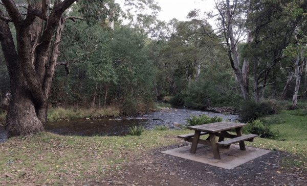 Carters Mill Camping Area