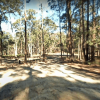 Bailes Camp Ground